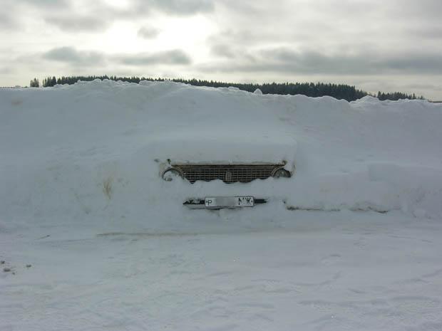 Копейка в снегу