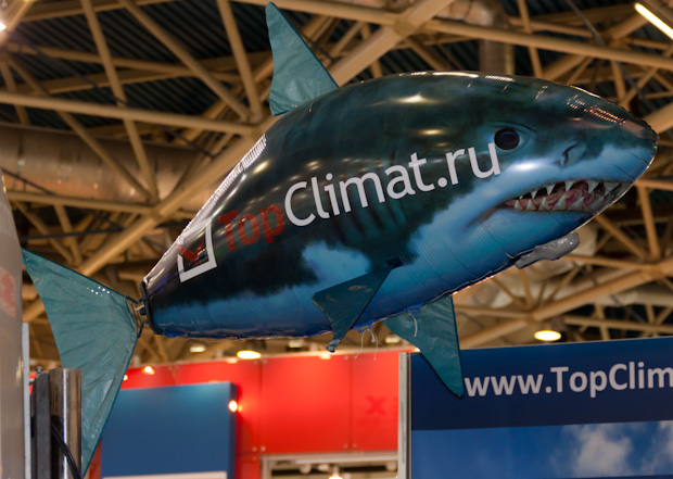 летающая акула