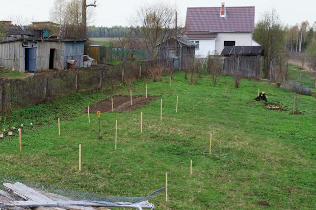 разметка участка под сад