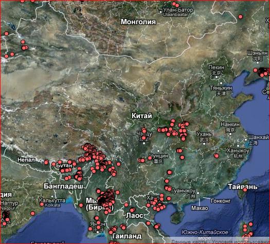 вырубка леса в Китае