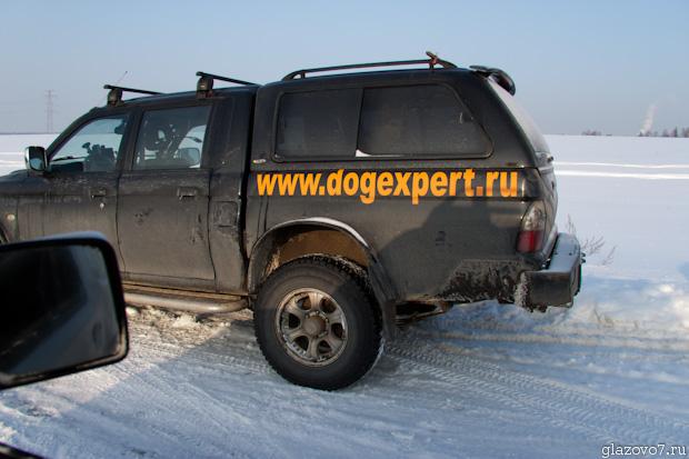 Dogexpert.ru