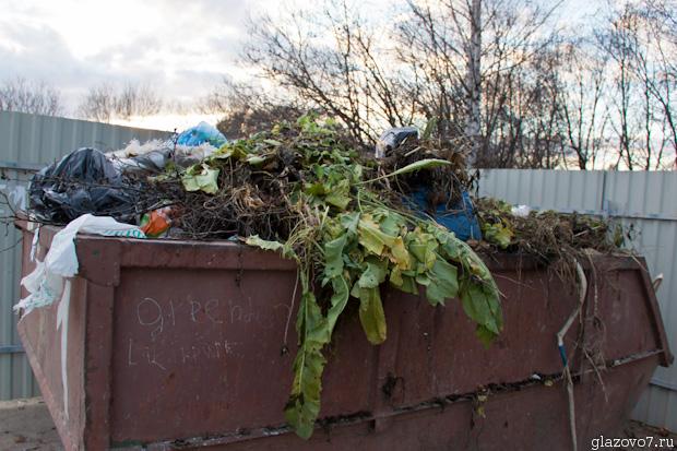 траву выбросили в мусор