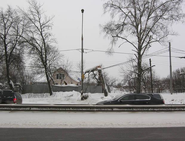 Дерево упало на провода