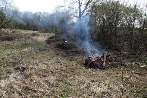 Сжигаем деревяхи