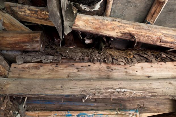 Крыша покрыта щепой