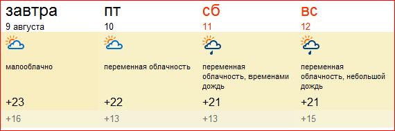 погода в августе 2012 года, Москва