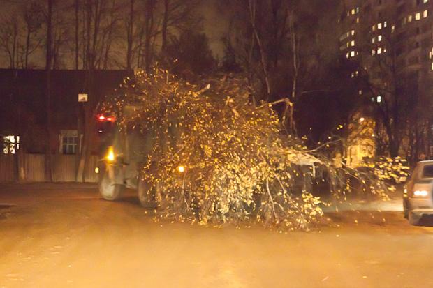 грузовик перевозит дерево