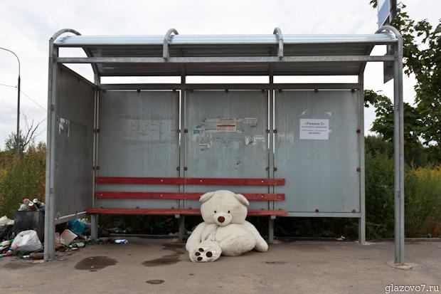 брошенный медведь