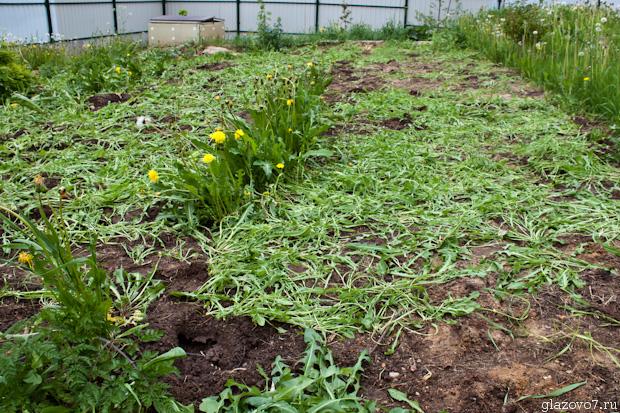 Работает ли спанбонд против сорняков?